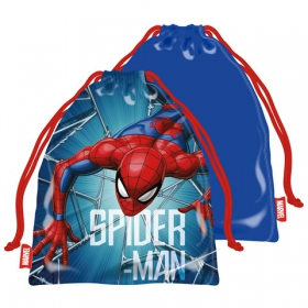 Spiderman picnic bag